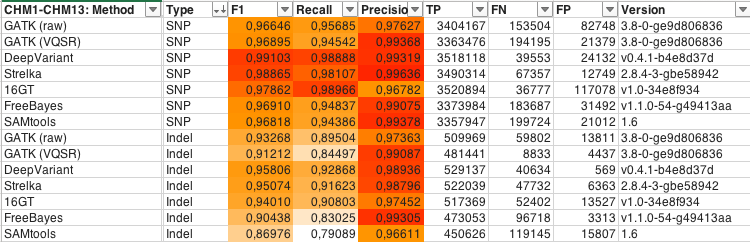CHM1-CHM13_table.png
